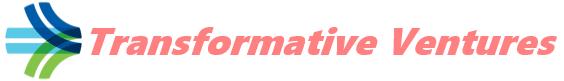 Transformative Ventures LLC